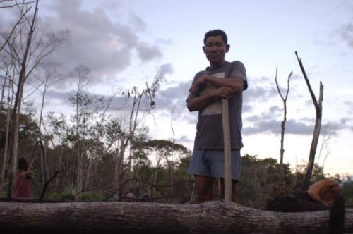 Read more about Tawai - A Voice from the Forest